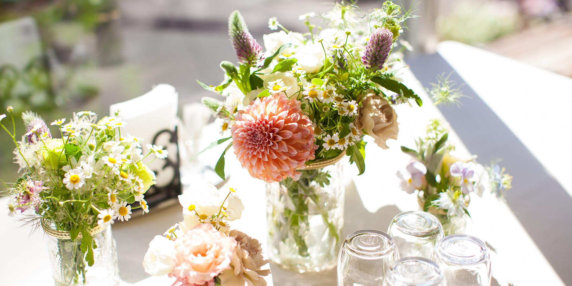 Flowers & Plants Hummingbird